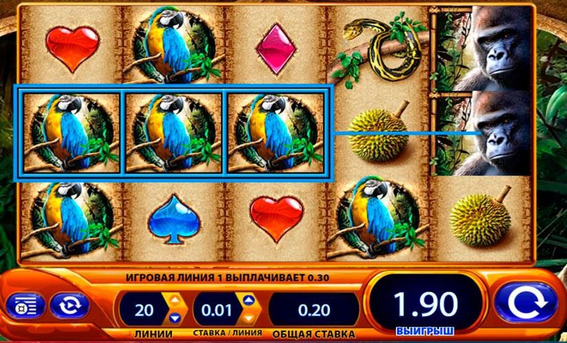 Amazon Queen Slot Machine Review