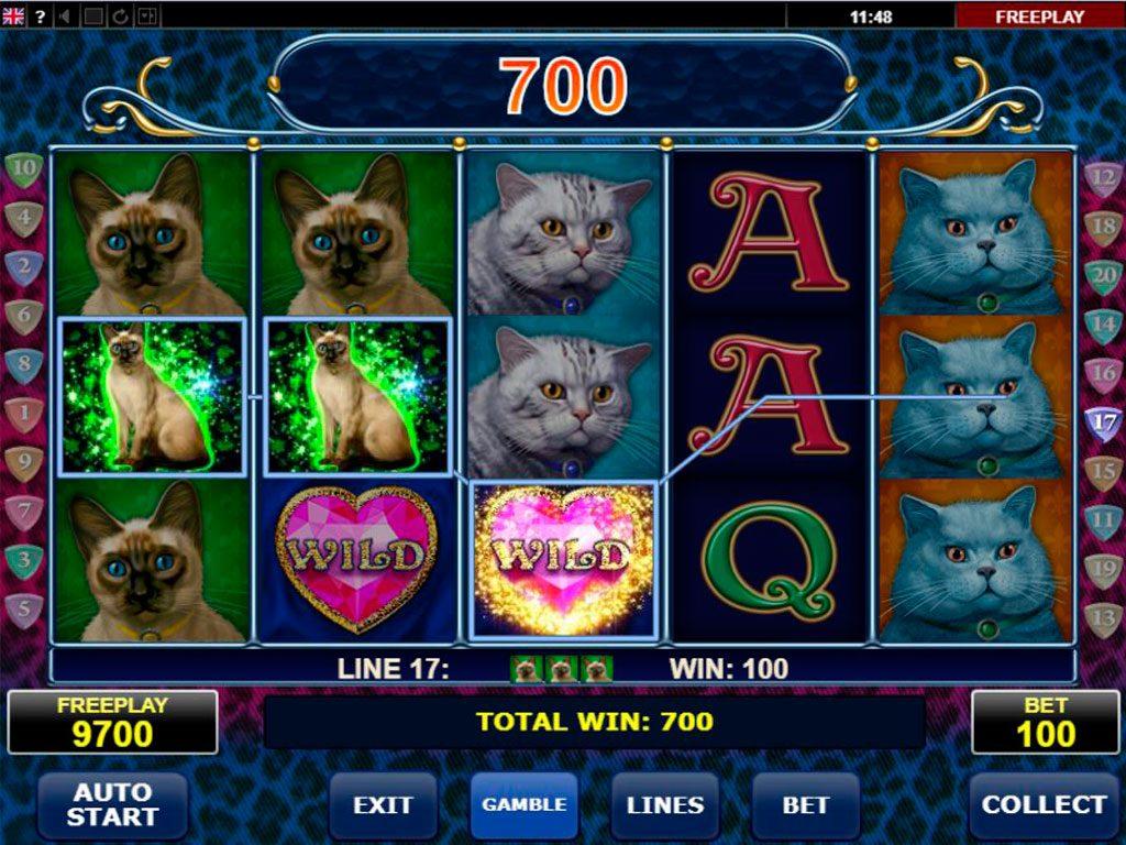 Diamond Cats Slot Machine Review