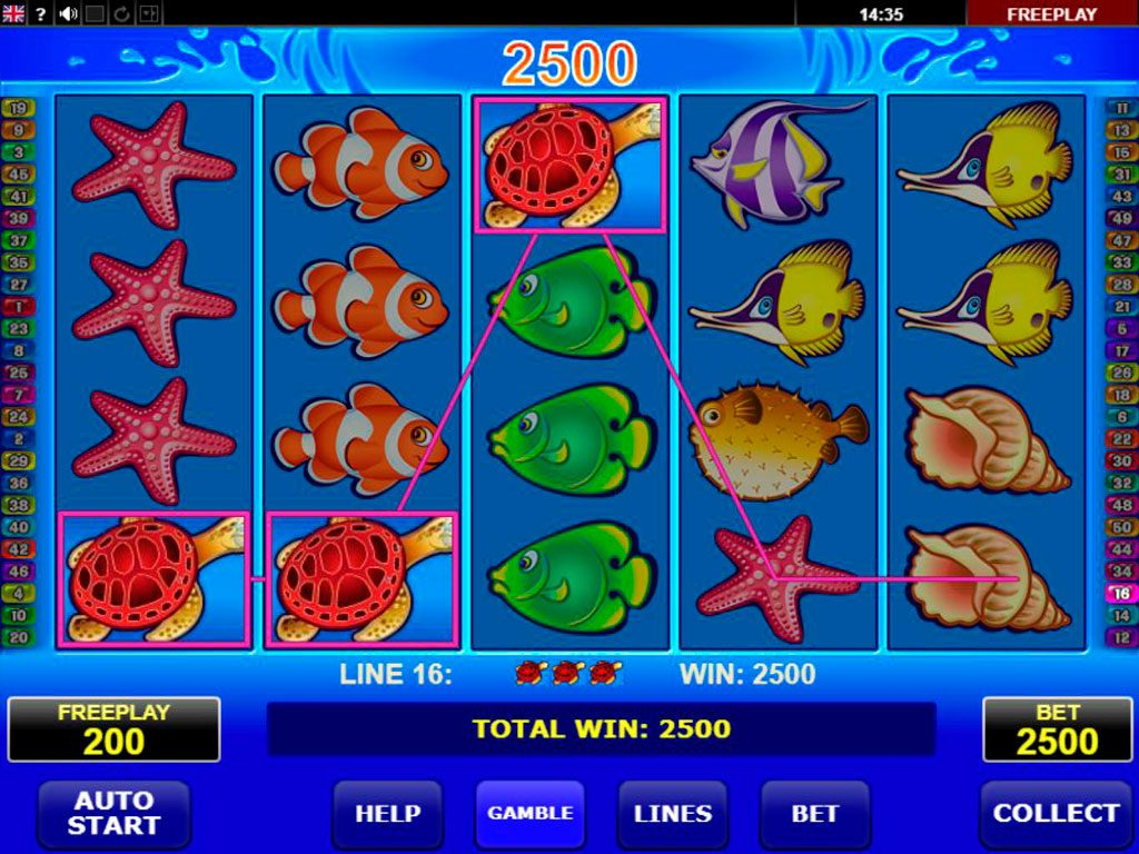 Wild Shark Slot Machine Review