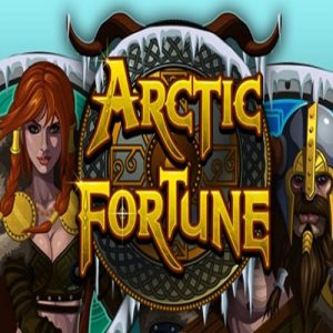 Arctic Fortune Slot Game