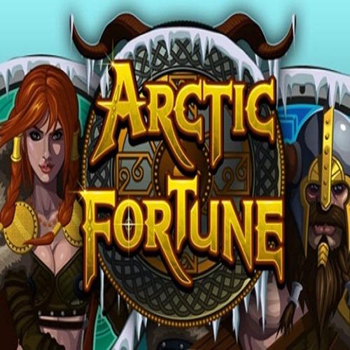 Arctic Fortune Slot Game