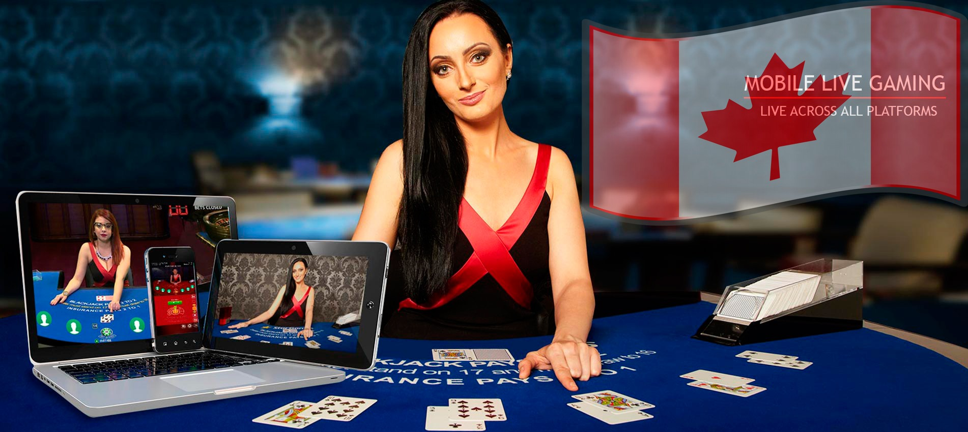 Live Dealer Online Casinos For Canadians