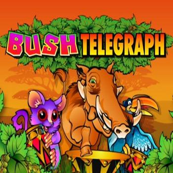 Bush Telegraph Slot Game