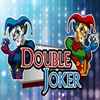 Double Joker Slot Game