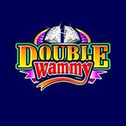Double Wammy Slot Game