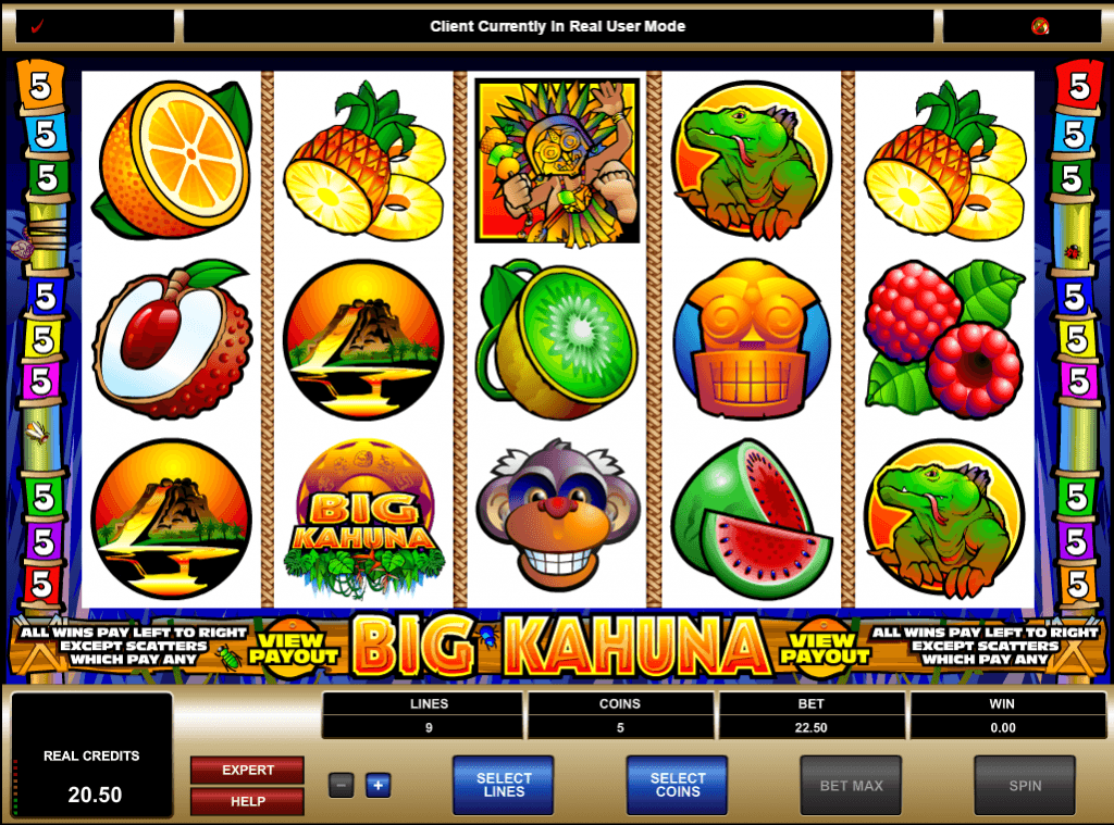 Big Kahuna Slot Game Online