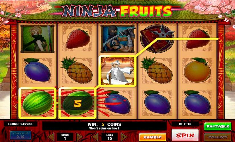 Ninja Fruits Slots Machine
