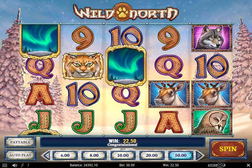 Wild North Slot Machine Review