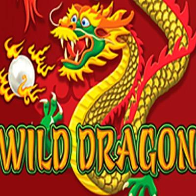 Wild Dragon Slot Machine